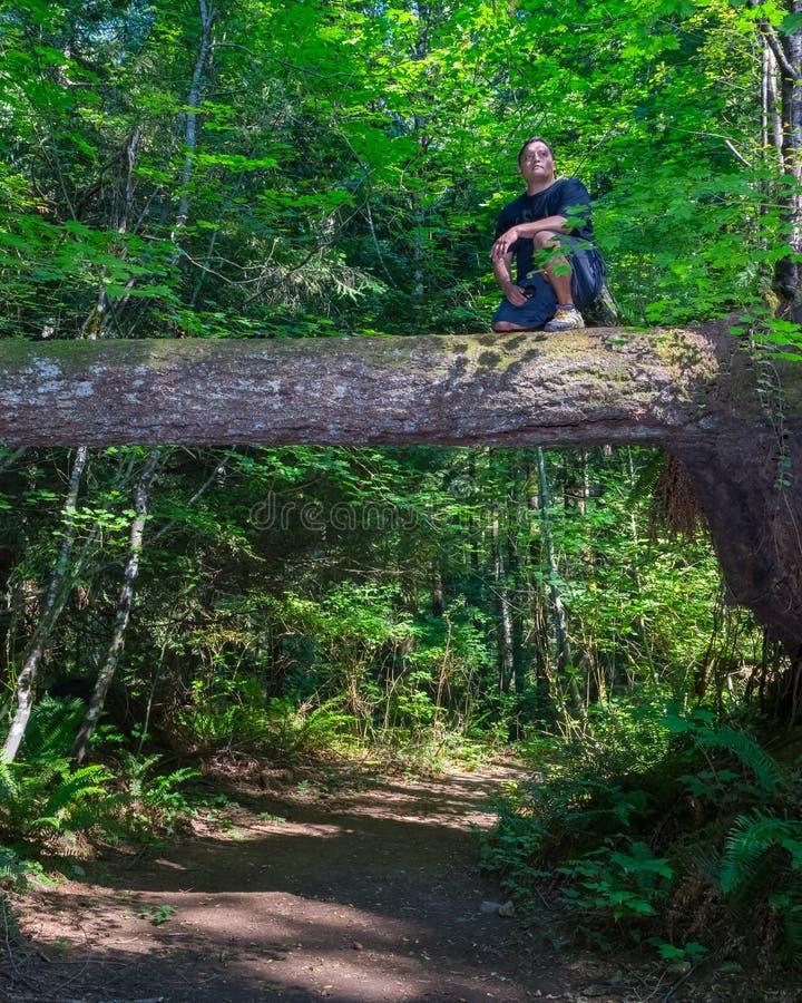 Man Takes Short Break During Hike royalty free stock images