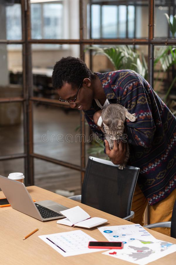 Man taking cat away from his computer. Fluffy pranker. A man taking cat away from his computer stock images