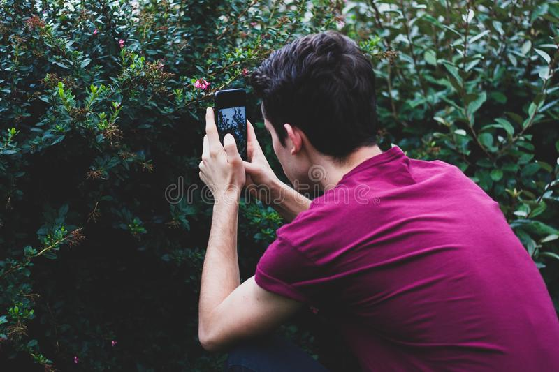 Man taking picture of flowers with a phone. With copy space royalty free stock photos