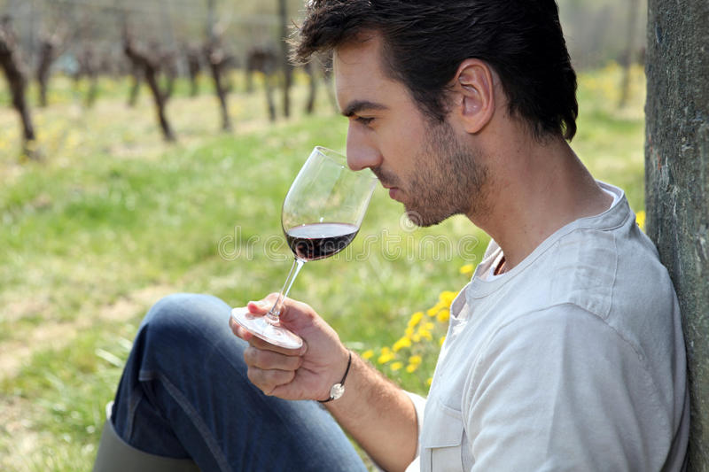Download Man tasting wine in field stock image. Image of chemical - 21369835