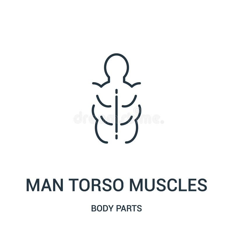 man torso muscles icon vector from body parts collection. Thin line man torso muscles outline icon vector illustration stock illustration