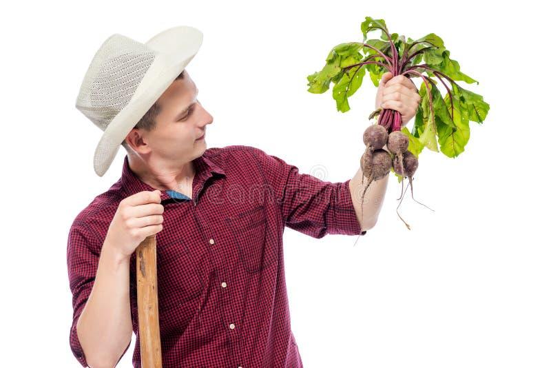 Man trädgårdsmästaren med en grupp av beta i hans hand på en vit royaltyfri foto