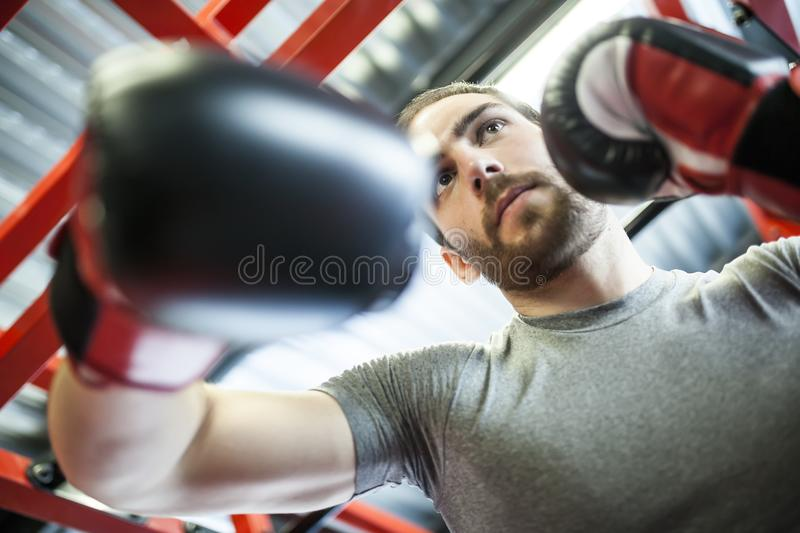 Man training with boxing gloves royalty free stock images