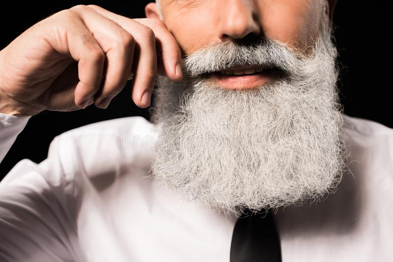 Man twisting moustache. Cropped shot of a man with a long beard twisting moustache royalty free stock images