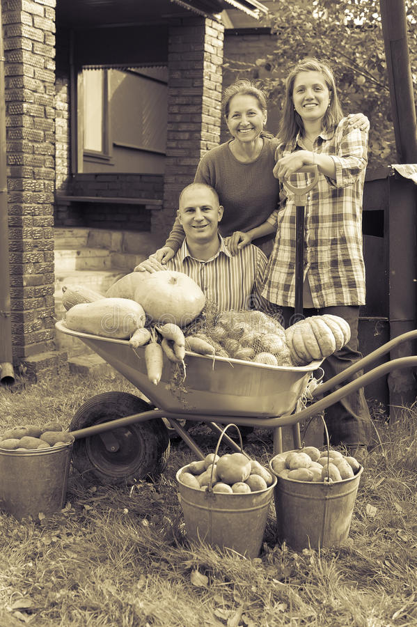 Man and two women with vegetables in garden. Man and two women with harvested vegetables in garden royalty free stock images
