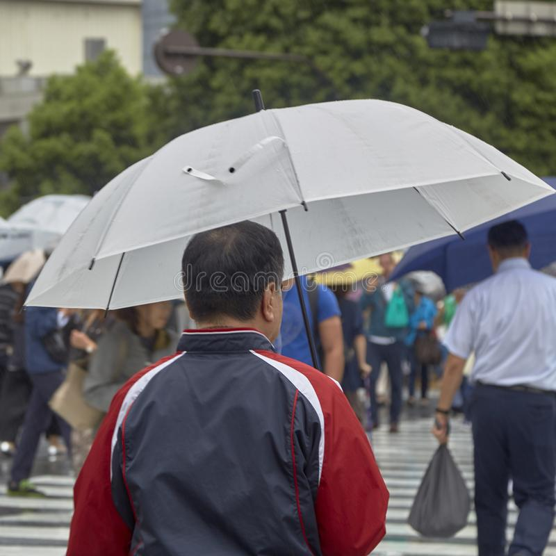 Man with umbrella walking stock images