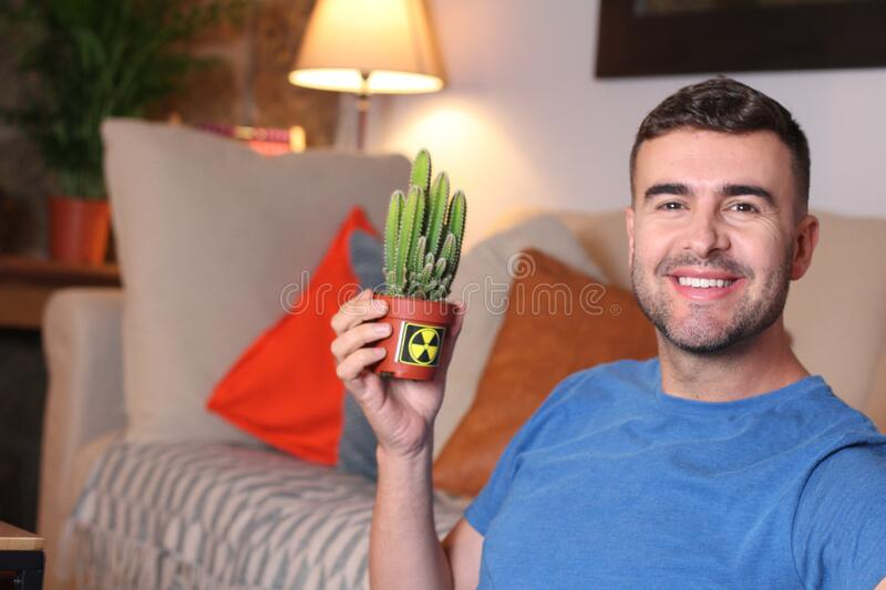Man using a cactus to absorb radiation at home royalty free stock photography
