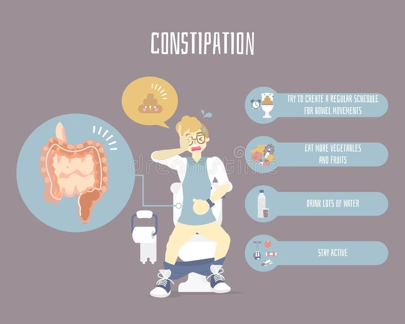 man using on flush toilet with constipation, large and small intestine,internal organs , health care infographic, defecate concept vector illustration