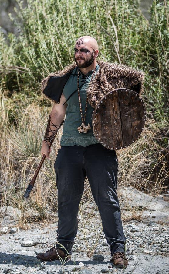 Man Viking Character royaltyfria foton