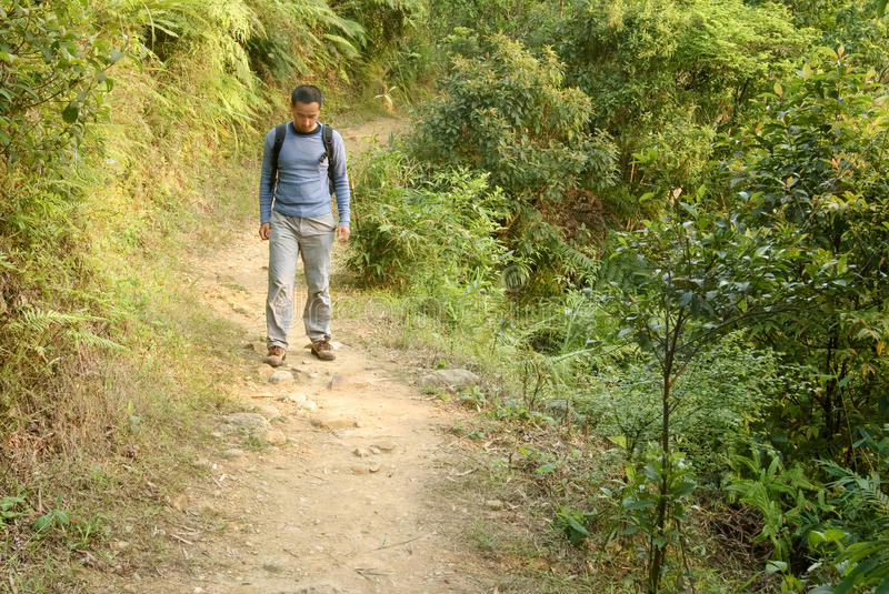 Man walking alone. On small rural path in forest of mountain royalty free stock photography