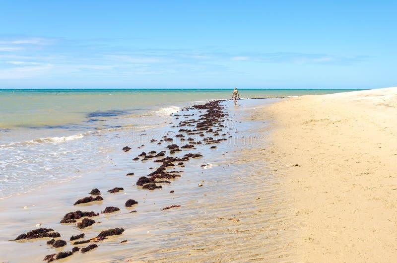 Man walking alone in Cumbuco white sand beach stock photography