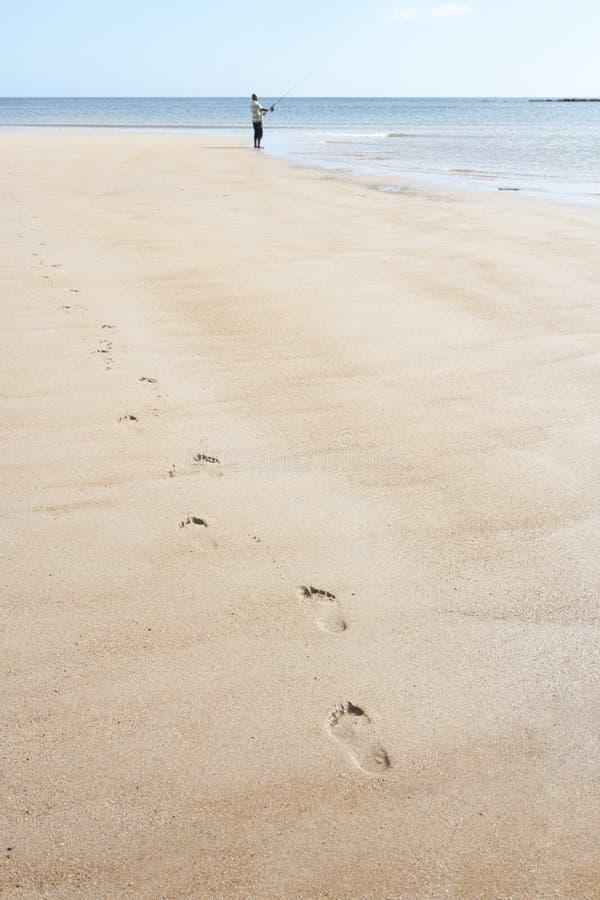 Download Man Walking Along Shore Of Beach Fishing Stock Photo - Image: 13673384