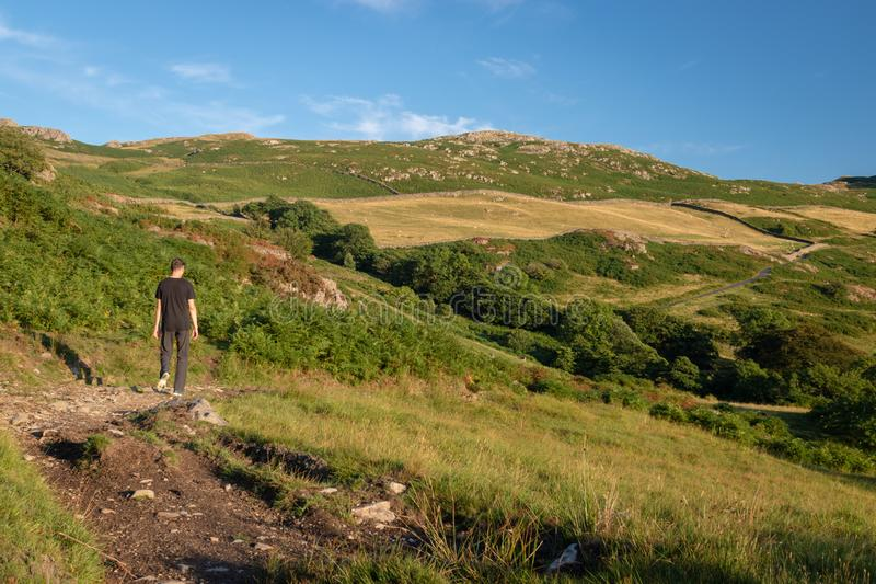 A man walking in beautiful English countryside in Duddon valley. In Cumbria (UK) on a sunny evening stock photos