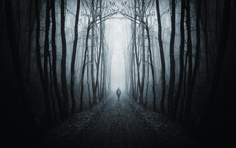Man walking on a dark path in a strange dark forest with fog royalty free stock photos