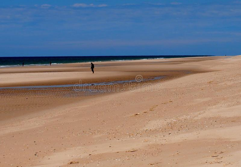Man Walking On Beach At Praia Do Barril Tavira Portugal stock image