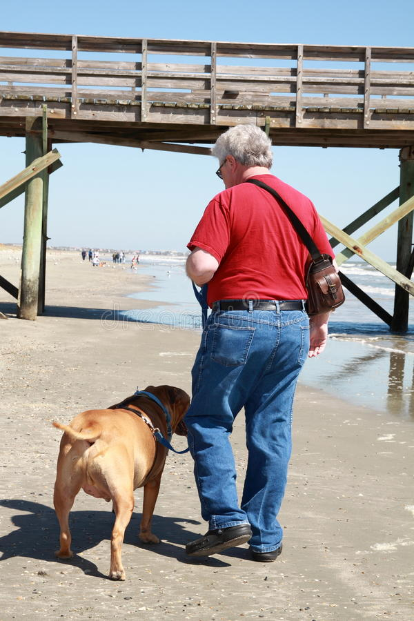 man walking dog royalty free stock photo