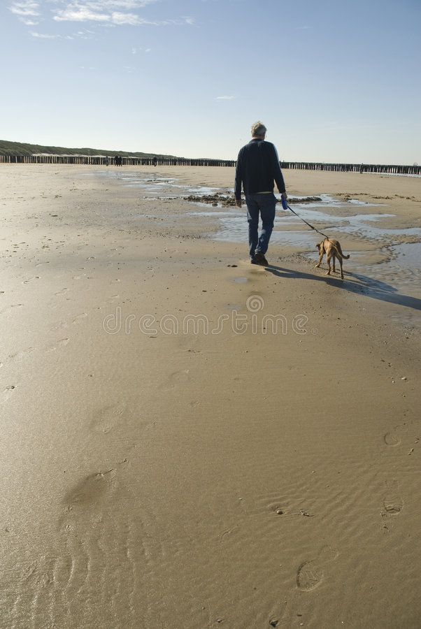 Man walking dog. An adult tall man walking his dog on a lonely beach royalty free stock photo