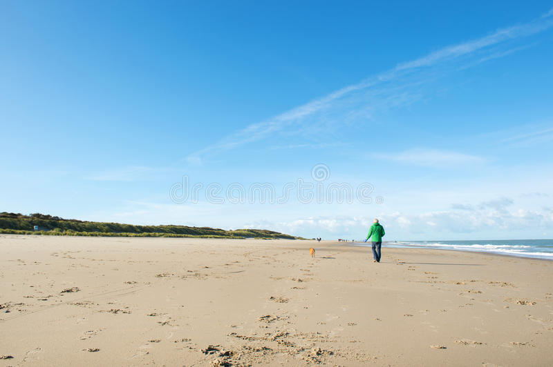 Man walking with dog at the beach. In Dutch Renesse royalty free stock photography