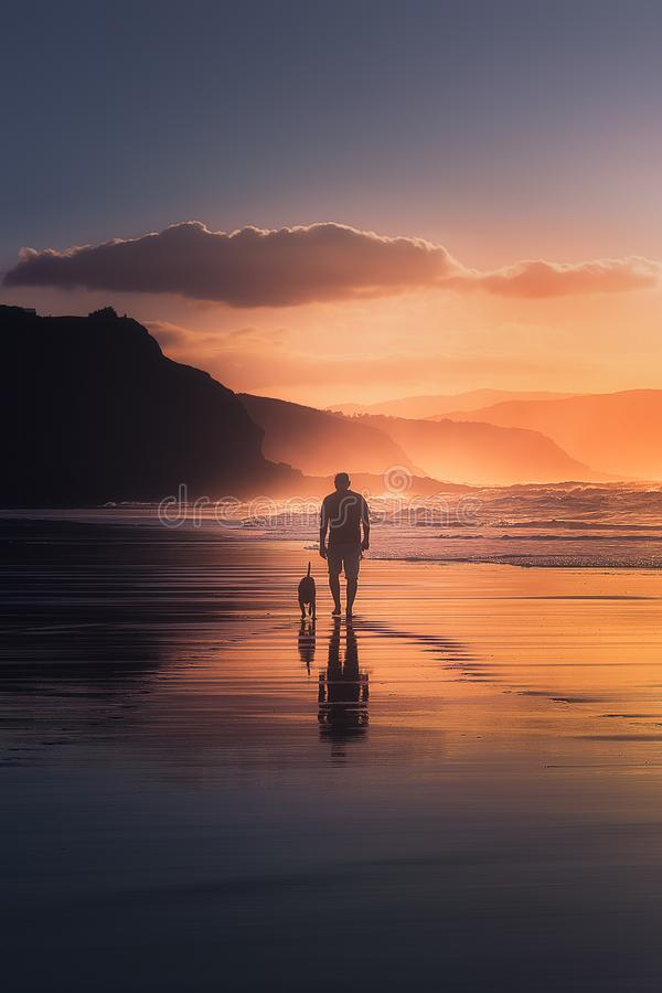 Man walking the dog on beach. At sunset royalty free stock images