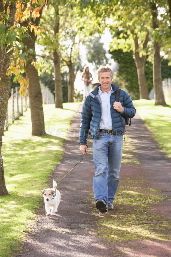 Man Walking Dog Outdoors In Autumn Park. Smiling stock photos