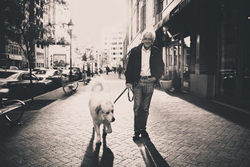 Man walking dog royalty free stock image