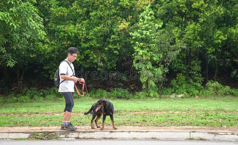 Man walking dog. Shot of a man walking his dog with nature or park background royalty free stock photo