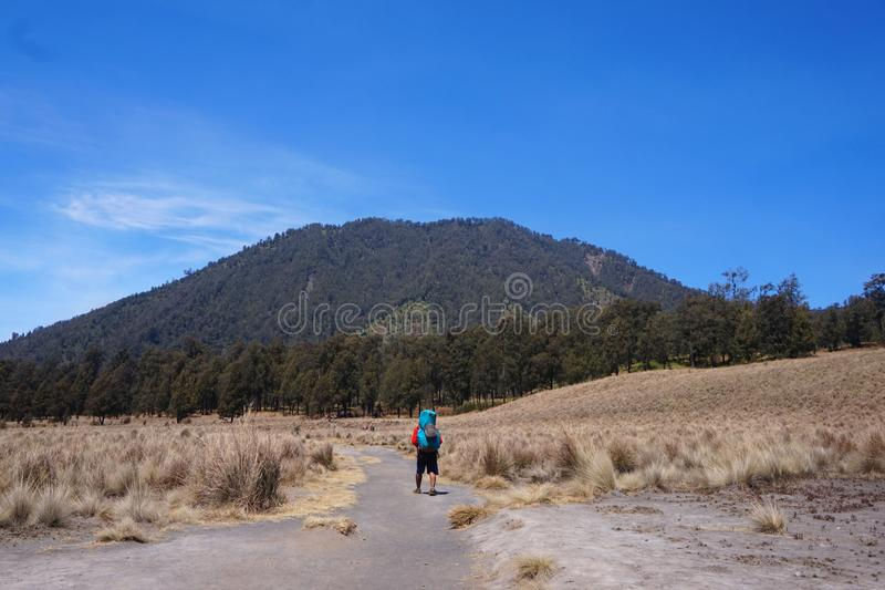 In The Middle of Savanna. A man is walking in hiking trail, in the middle of dried savanna. Facing to the forest of Cemoro Kandang before summit to the top of stock photos