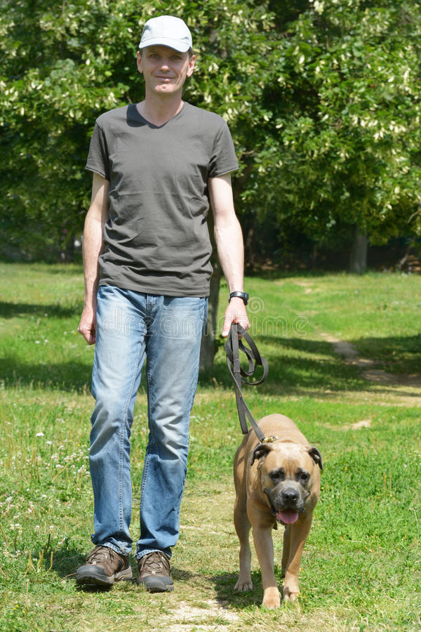 Man walking with his dog. In the park stock photography