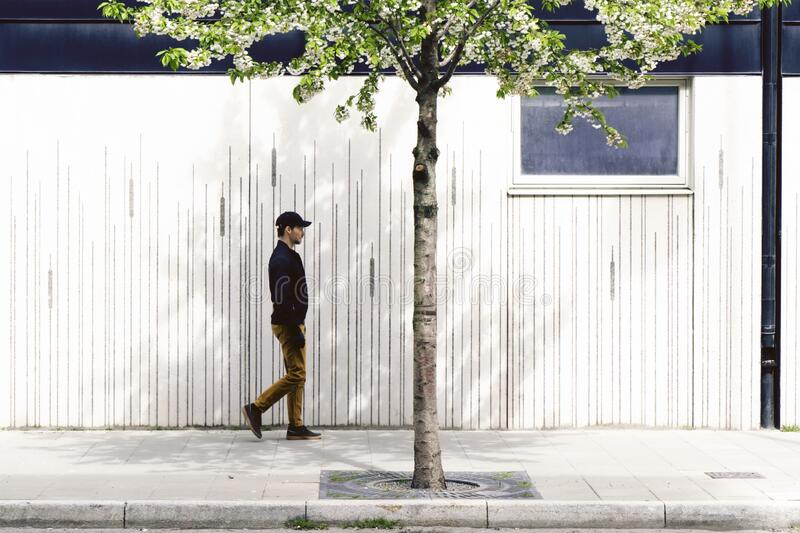 Man walking by house facade under blooming spring tree. stock photos