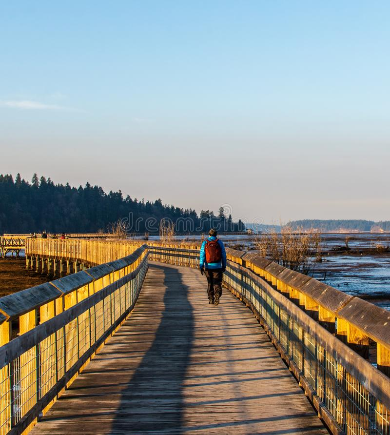 A lone man walking a long walk in a popular place in Olympia Washington royalty free stock photography