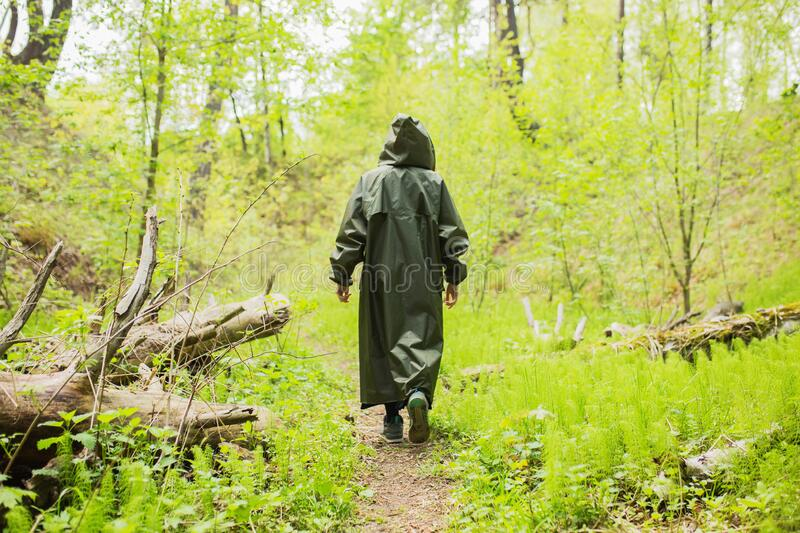 Man walking in rain coat on background of wet forest. Healthy lifestyle. Green summer nature. Man walking  in raincoat. Rain in. Forest. Dark raincoat. Extreme stock photography