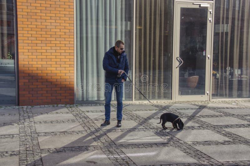 A walk with a dachshund stock photo