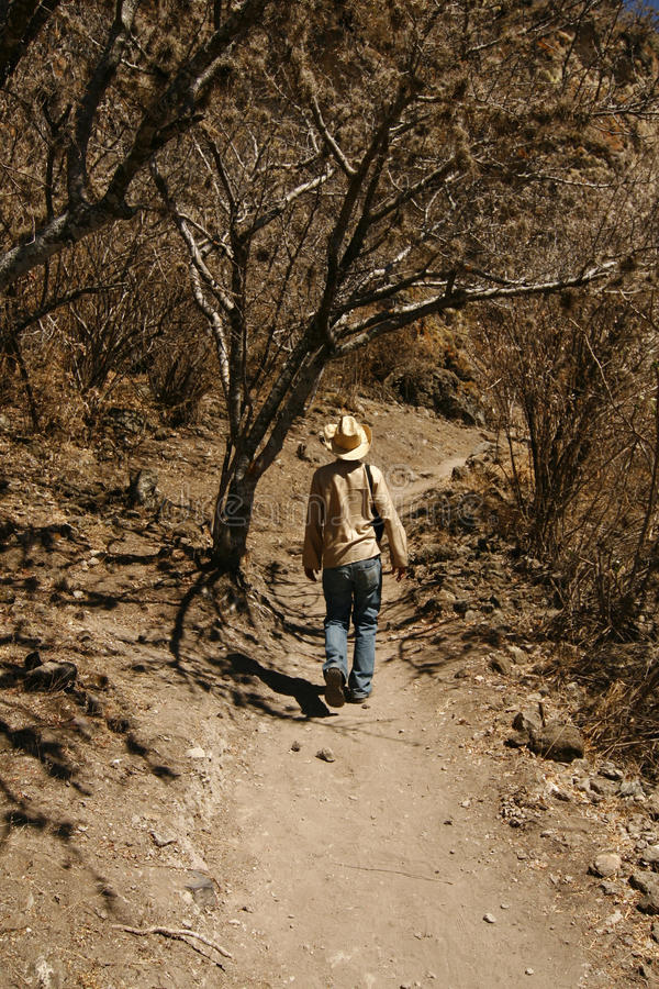 A Man Walking Up The Hillside In Mexican Desert Stock Images