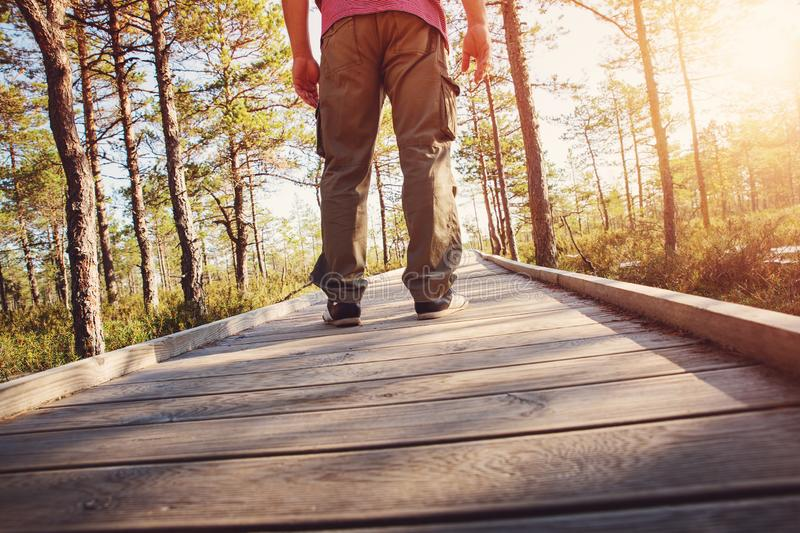 Man walking on wooden walkway in nature royalty free stock photos