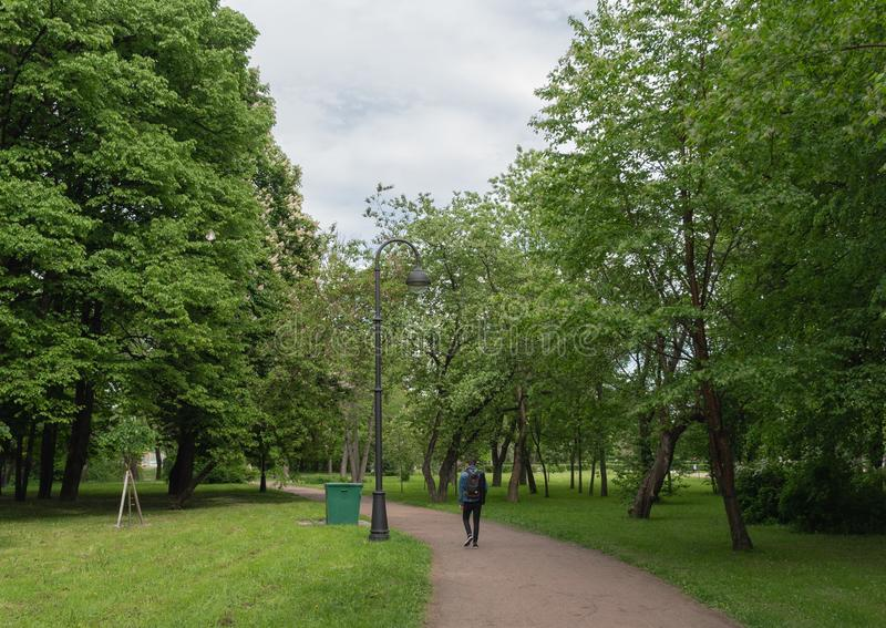 A man walks along the path of the Park with chestnut trees. Horizontal orientation. Cloudy day stock photography
