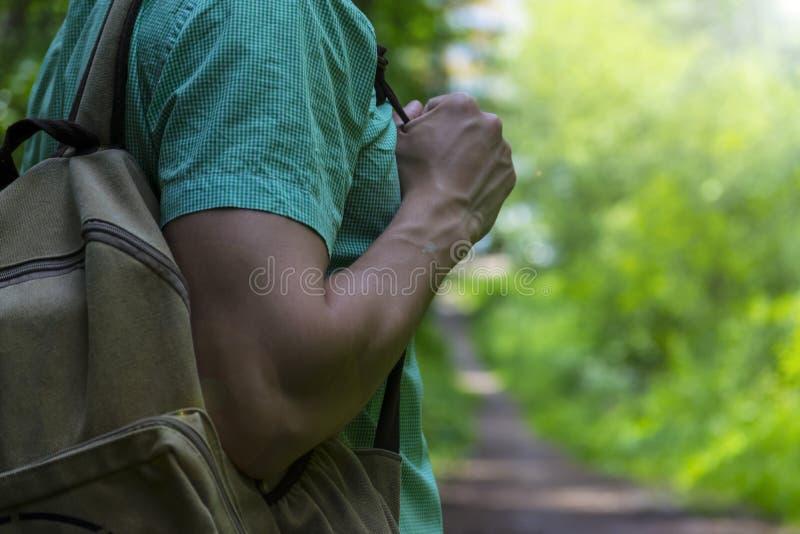 A man walks in the woods. A traveler, a tourist. Summer. Autumn. A man walks in the woods. A traveler, a tourist. Summer. Autumn royalty free stock image