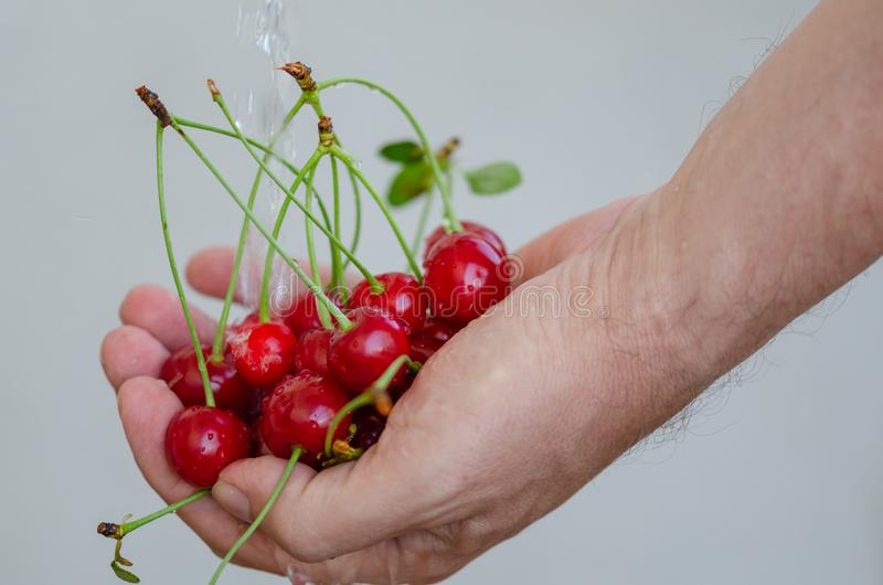The man is washing the cherries stock photos