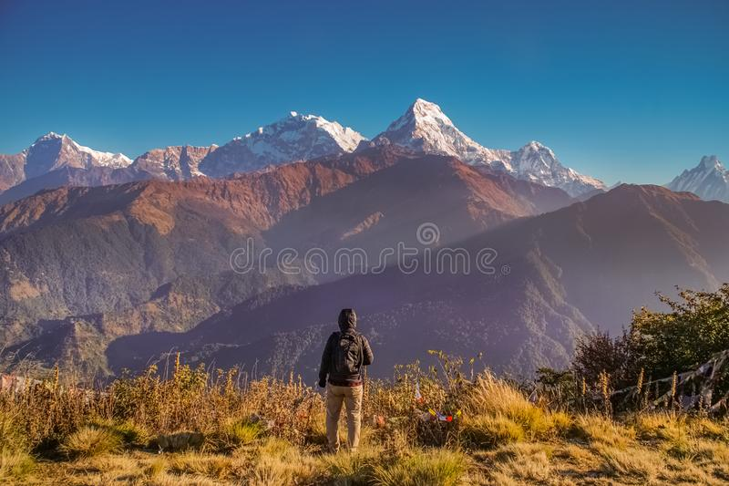 Man Watch Sunrise at Poon Hill of Annapurna Mountain Range in Nepal. Active Male Tourism. Trekking in the Himalayas royalty free stock image