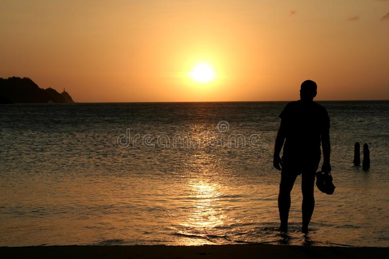 Man watching sunset royalty free stock image