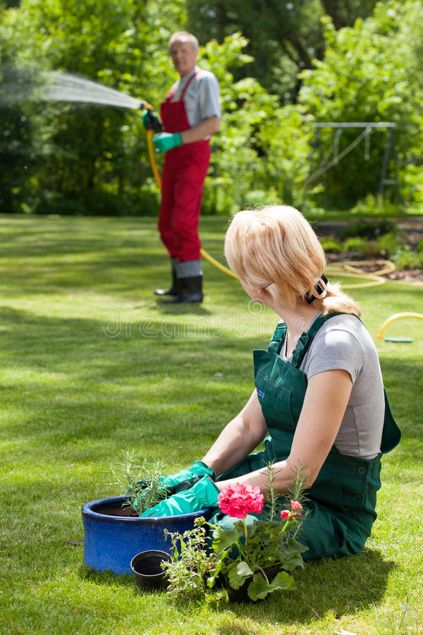 Man watering lawn while his wife caring about flowers royalty free stock images