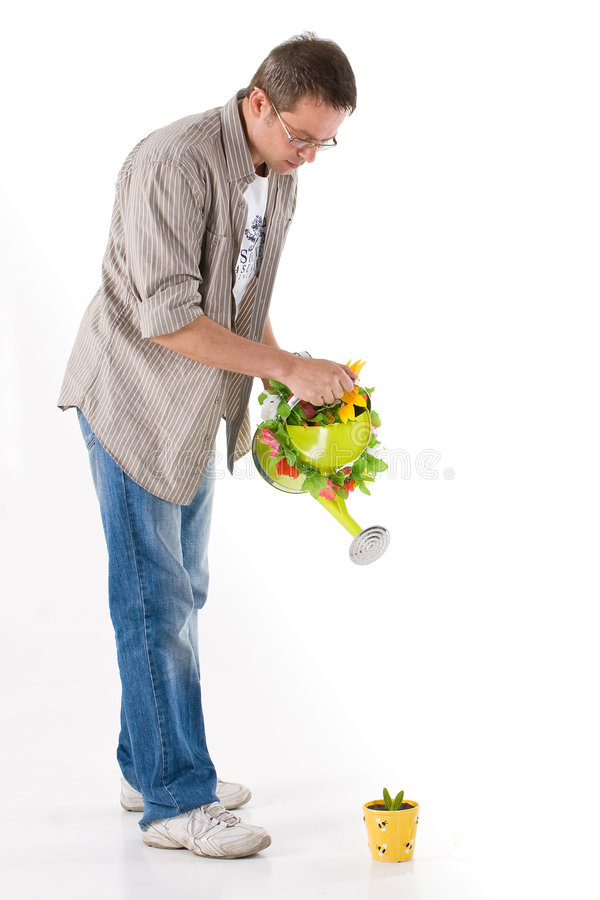 Download Man watering a small plant stock photo. Image of jeans - 5916698