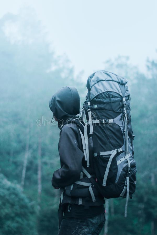 Man Wearing Black Hoodie Carries Black and Gray Backpacker Near Trees during Foggy Weather royalty free stock image