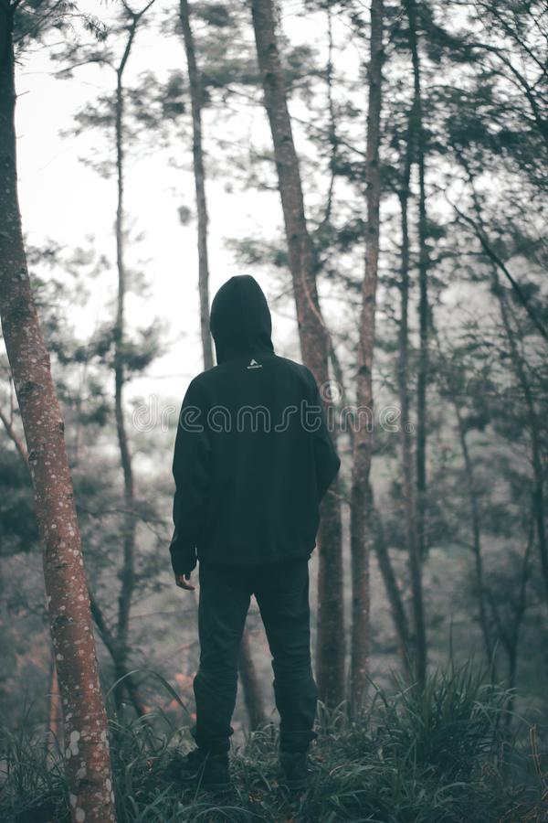 Man Wearing Black Hoodie With Black Pants Standing in the Middle of Forest stock photo