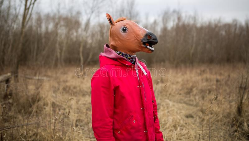 Man wearing horse mask stock image
