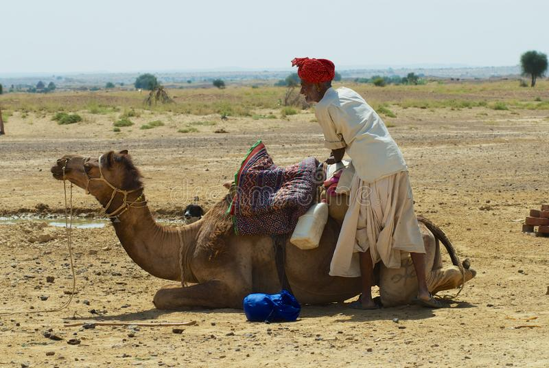 Man wearing turban and traditional dress gets his camel ready for a safari ride in the desert near Jodhpur, India. royalty free stock photo