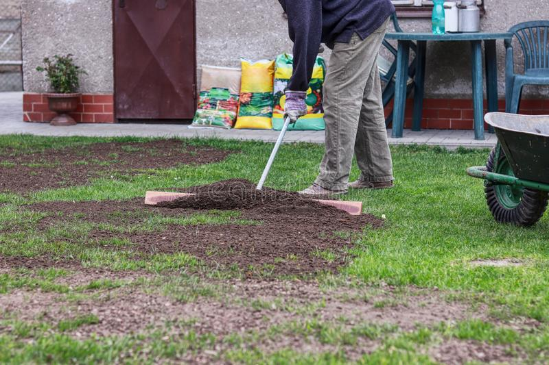 Man is wears black sweatshirt, work trousers and work gloves. He has work outfit. Summer volunteer is covering hole in yard with. Earth and aligning the surface stock photo