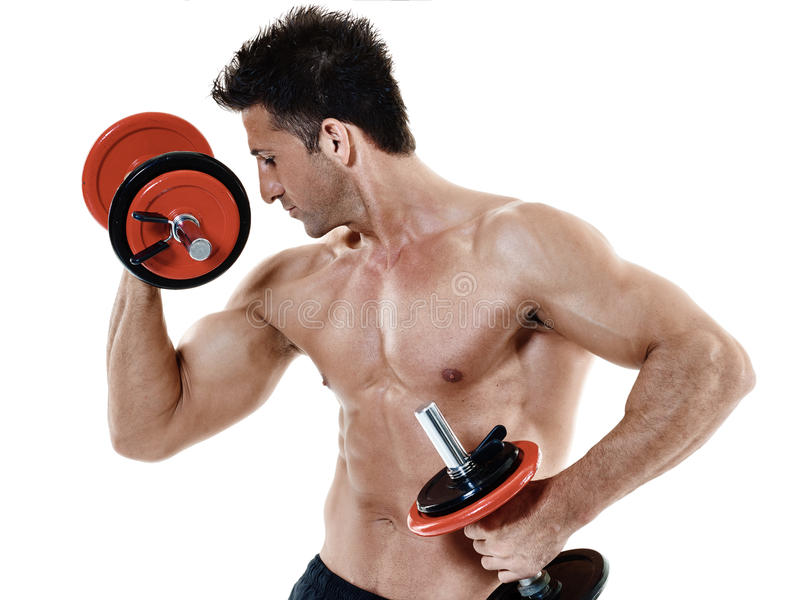 Man weights exercises isolated. One caucasian man exercising fitness weights exercices isolated on white background royalty free stock images