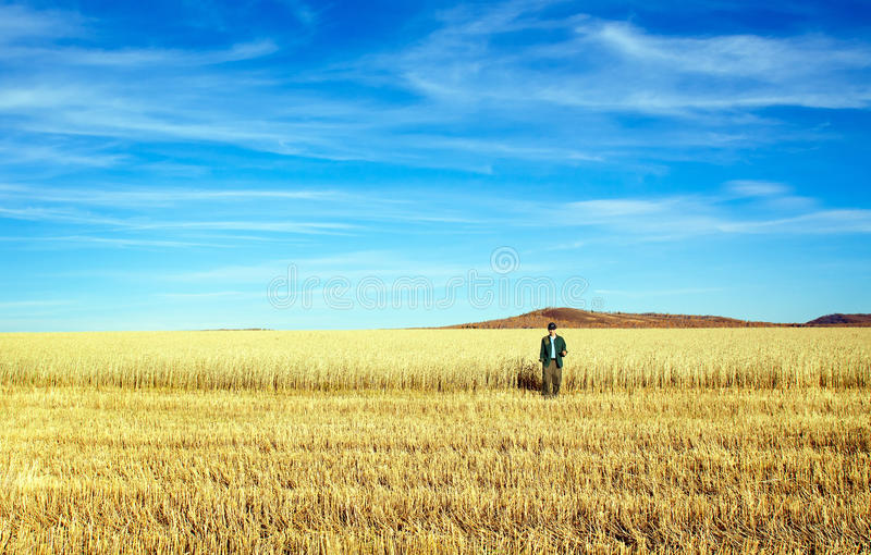 Download Man in wheat field stock photo. Image of wheat, lifestyles - 27200522