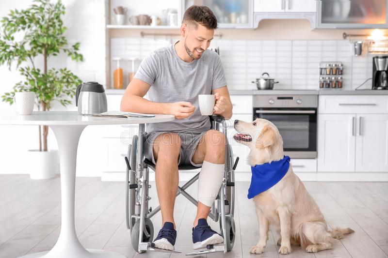 Man in wheelchair cooking with service dog royalty free stock photography
