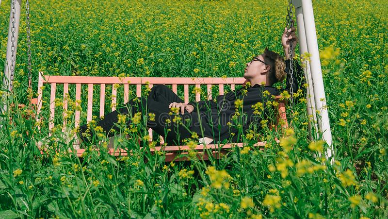 Man in White and Brown Canopy Swing Surrounded With Yellow Petal Flower royalty free stock photos